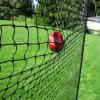 Rede personalizada da gaiola de batedura do basebol para o treinamento