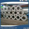 Fornitori di bobine d'acciaio di PPGI