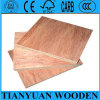 Linyi Commercial Plywood Fabricante / Pencil Cedar Kuering Bingtangor Birch Okoume Contraplacado