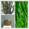 100% reiner natürlicher weiße Weide-Barke-Auszug