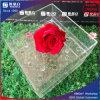 Alto rectángulo de acrílico transparente de la flor