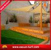 Natuurlijk het Modelleren Plastic Kunstmatig Gras voor de Decoratie van de Tuin