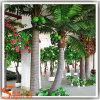 De binnen Palm van de Kokosnoot van het Decor Valse Kunstmatige