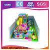 Saleのための電流を通されたPipe Plastic Material Indoor Playground Equipment