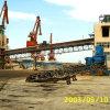 Ленточный транспортер Sha/ASTM/DIN/Cema стандартный вообще фикчированный для регулировать кусковых материалов