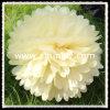 Pompom popular del papel de tejido de la decoración