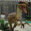 Jurassic Dinosaur Skeleton Model for Amusement Theme Park (FLDC)