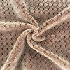 Jacquardwebstuhl-Flanell-Samt 100% der Polyester-heller Seide-1