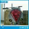 Ajustableのサドルが付いている電気スクーターのバイクの自転車を折る10  350W