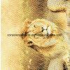 le lion Pigment&Disperse du désert 100%Polyester a estampé le tissu pour le jeu de literie