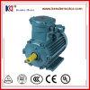 Motor eléctrico a prueba de explosiones de la CA del arrabio 2p 315kw Yb3-355L2-2