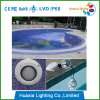 PAR56 per la piscina, indicatori luminosi del raggruppamento, indicatori luminosi subacquei