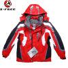 Nueva chaqueta de esquí de nylon de los hombres de Taslon