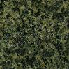 Tegels en Plakken van het Graniet van China de de Groene