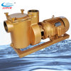 15h Copper Swimming Pool Pump Trinkwasser Pumps (BP150)