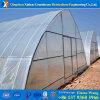 Estufa da película plástica do túnel da camada da alta qualidade única para Growing vegetal