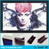 Segno magnetico sottile personalizzato del contenitore chiaro di foto di formato LED