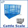 돼지를 위한 무게를 다는 가늠자가 디지털 가늠자 돼지 가늠자 가축에 의하여 오른다