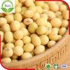Proteinreiche Soyabohne von Sojabohnenöl-Milch