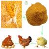 Еда клейковины мозоли высокая - питание протеина животное