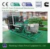 10kw 20kw dirigem a planta pequena do biogás do uso ou o mini gerador do biogás