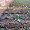 Qualität Agriculture Drip Irrigation Pipe für Irrigation System