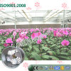 China Hanging Type Exhaust Cooling Fan für Flowers Greenhouses