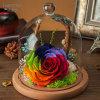 Manier 100% Natuurlijke Echt nam Bloem voor de Decoratie van de Gift van de Valentijnskaart toe