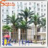 Het beste verkoopt Openlucht Decoratieve Kunstmatige Kokospalm