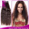 インドの毛の自然な波、人間のRemyの毛のよこ糸(GP-ISW22 )