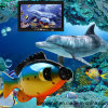 Sistema de Câmera de Pesca à Prova de Água Subaquática