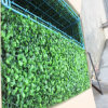 Grass artificial Synthetic Grass para Decoration Wall Evergreen Boxwood Hedge