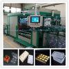 Máquina plástica de formação grande de Thermoforming da área do fabricante
