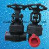 API602 800lb/1500lbは鋼鉄A105糸端NPTのゲート弁を造った