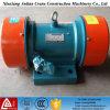 3 Phase WS-elektrischer Zerhacker-exzentrischmotor
