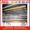 중국은 제조자, 단 하나 대들보 천장 기중기를 5 톤 Cranes