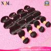 アメリカのMarketのための卸し売りPopular 7AブラジルのRemy Hair