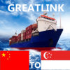 Serviço de transporte do mar de FCL de China a Pasir Panjang, Singapore
