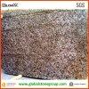 Luxueus Graniet Meteorus voor Countertops van de Gastvrijheid