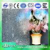 3mm-6mm Decorative Glass con CE & ISO9001 LFGB