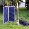 poly panneau solaire 200W avec du ce, certificats de TUV (JINSHANG SOLAIRES)