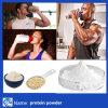 Polvere della proteina del contrassegno privato del Vegan del siero di latte di parità aurea