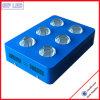 O diodo emissor de luz emitindo-se azul vermelho da cor cresce a luz