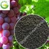 Het organische Korrelige Kalium Humate van de Meststof voor Landbouw