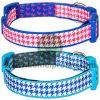 De gepersonaliseerde Halsbanden van de Opleiding, de Kragen van het Puppy, de Kragen van de Schok voor Honden