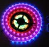 Tira direccionable de Apa102 Digitaces RGB LED, 60 LEDs/M,