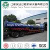 Dn800 Kohlenstoffstahl BS ragen hoch (T014)