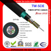 Cable acorazado óptico 12f mm/Sm GYTY53 de fibra con la cinta de acero y el tubo flojo trenzados