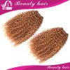 Cabelo Curly Kinky brasileiro do Virgin para o cabelo brasileiro barato Curly brasileiro do cabelo humano da venda 8A 4 pacotes de cabelo Curly Kinky do Afro