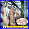 Ligne équipement de processus d'abattoir de porc de porc